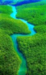Amazon River.jpg