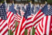 USA Flags.jpg