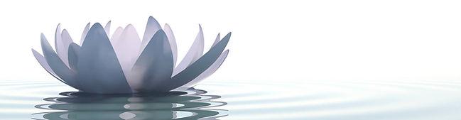 Long Lotus.jpg