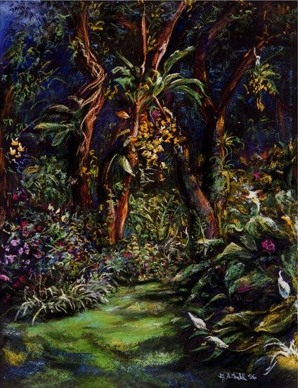Ken's Garden