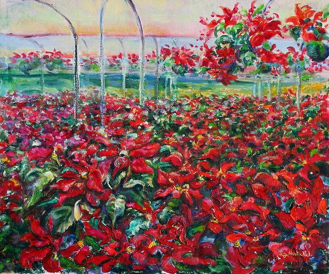 The Greenhouse (El Vivero)