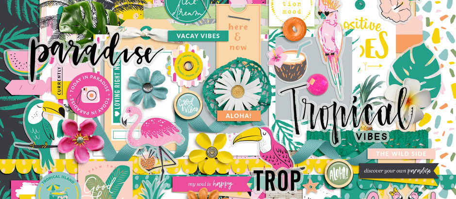 SHOP UPDATE | TROPICAL VIBES
