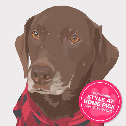 StyleAtHome-MDWin20-Badge-Illustrate-It_