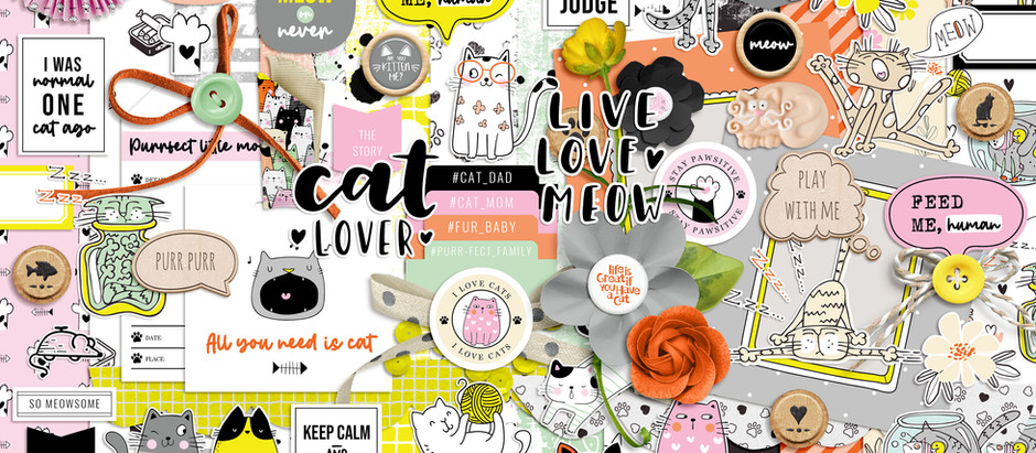 SHOP UPDATE | LIVE LOVE MEOW