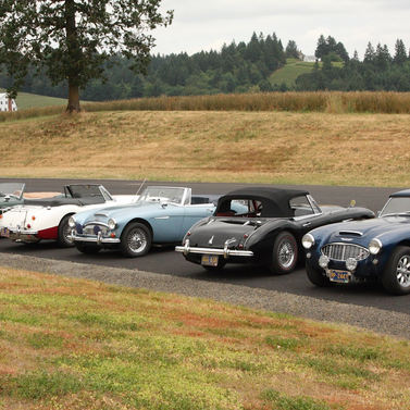 Healeys on Tour and parked at a winery in the Willamette Valley.