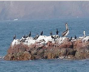 iles au large de paracas