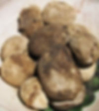 black dehydrated potatoes