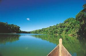 selva peruana sur