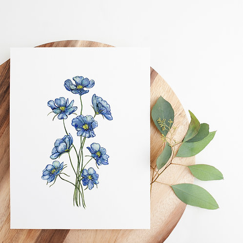 Watercolor Cosmos Print | 8x10""