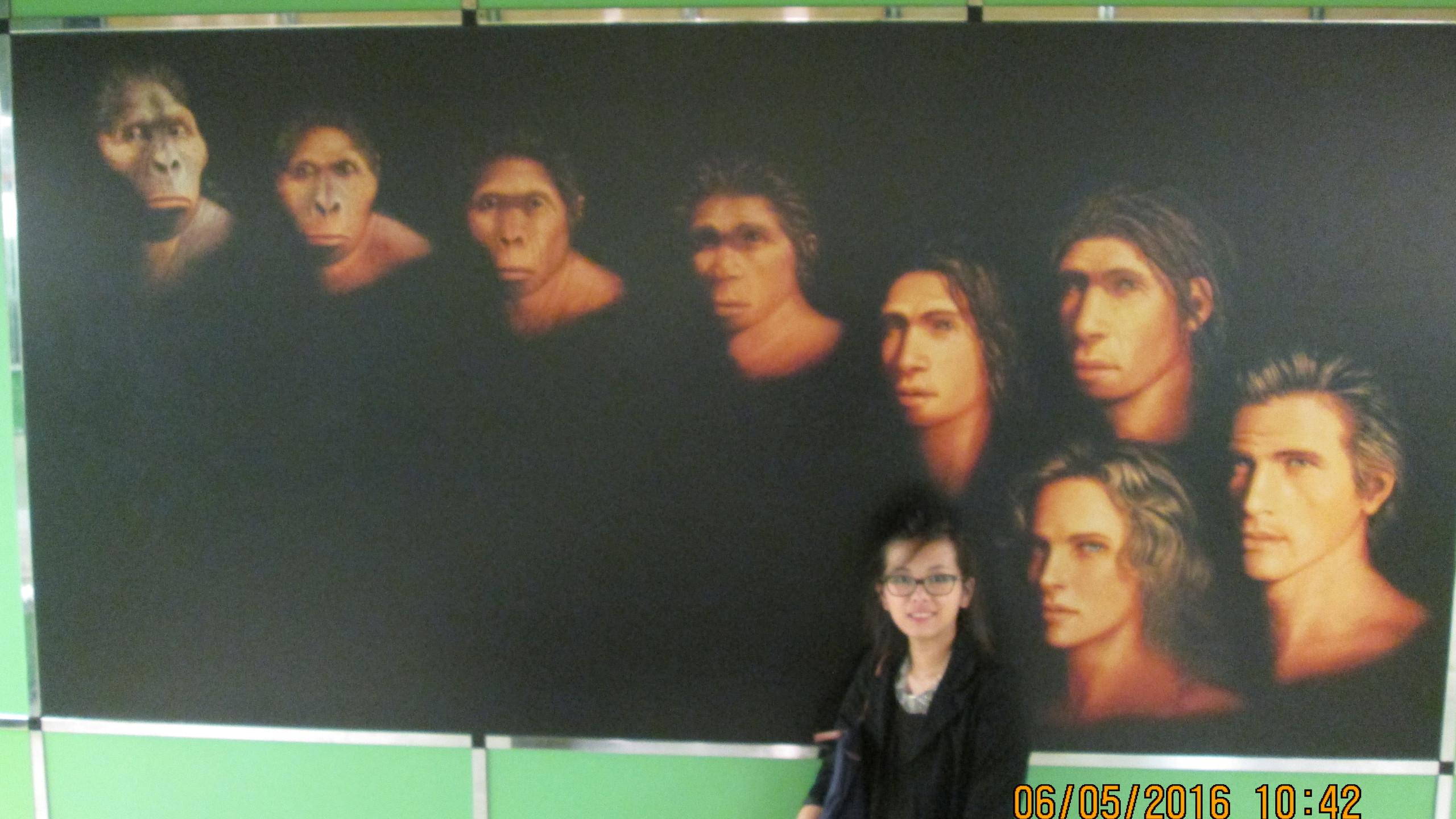 Evolution de la race humaine ...