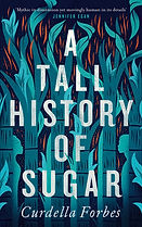 Tall History UK cover.jpg