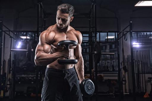 Os 11 Melhores Exercícios de Bíceps