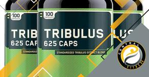 Tudo o que você precisa saber sobre Tribulus Terrestris. O que é, como usa, para que serve.