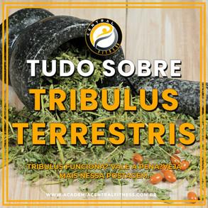 TRIBULUS TERRESTRIS FUNCIONA MESMO? TUDO SOBRE O TRIBULUS TERRESTRIS.