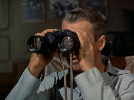 1 Woman, 100 Movies - #96: Rear Window