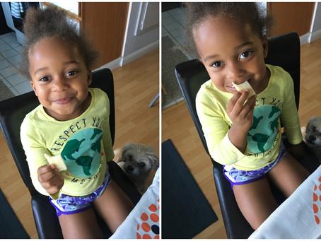 Toddler Cheese Taste Test: Cheddar Edition