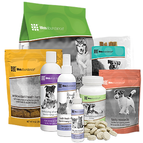 Start-Pack-Dog-400.png.pagespeed.ce.Xnoh