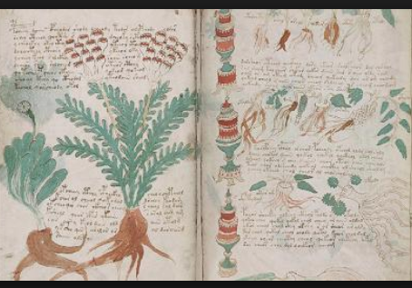 Voynich Manuscript !