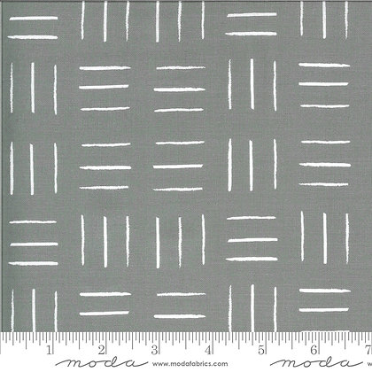 Zoology Gray Lines 48304 17