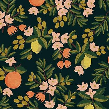 Primavera Citrus Floral Canvas