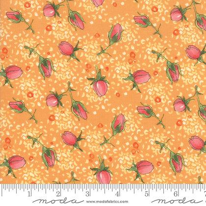 Abby Rose Citrus Rosebud
