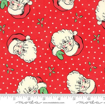 Swell Christmas Santa
