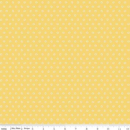 Beautiful Day Daisies Yellow
