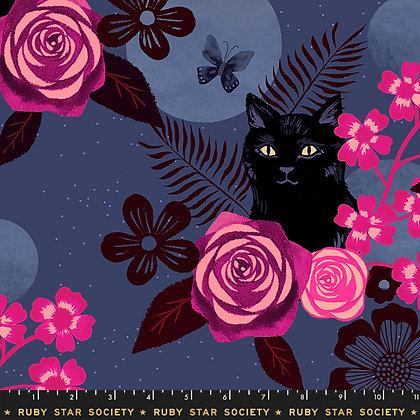 Magic Cat/Midnight