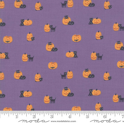 Ghouls Goodies Pumpkin Cats