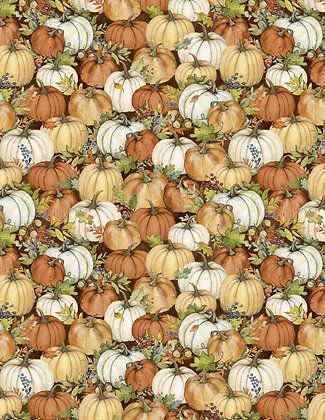 Seeds of Gratitude Pumpkins SALE