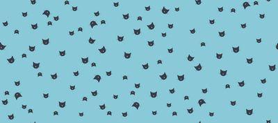 Avalana Terycloth Cat on Blue