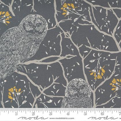 Through the Woods Owl