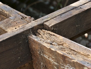 Do a Spring Deck Safety Check Before you Decide to Repair, Resurface or Replace Your Decking