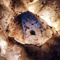 Canadian Black Tip Auralite Cluster