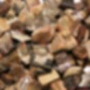Petrified%20wood_edited.jpg