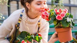 Os 7 benefícios para a saúde mental, que a jardinagem nos trás.