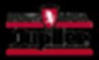 Jupiler_League_1993-2006.png