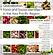Food Book 2021.png