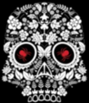 Large Skull Logo - Black Background_edit