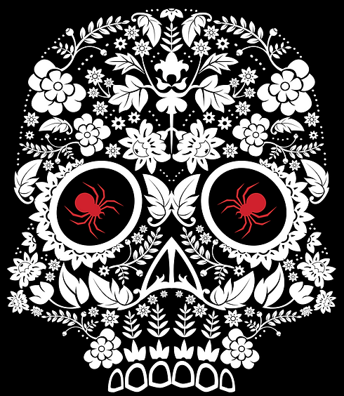 Large Skull Logo - Black Background_edit