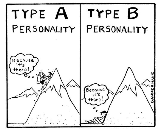 The-type-b-teacher-bannerman.jpeg
