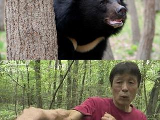 Пенсионер из Японии отбился от дикого медведя при помощи каратэ
