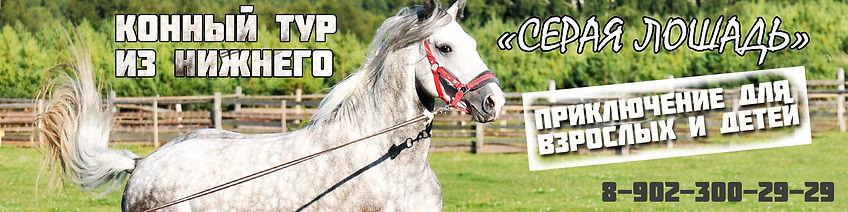 шапка кони.jpg