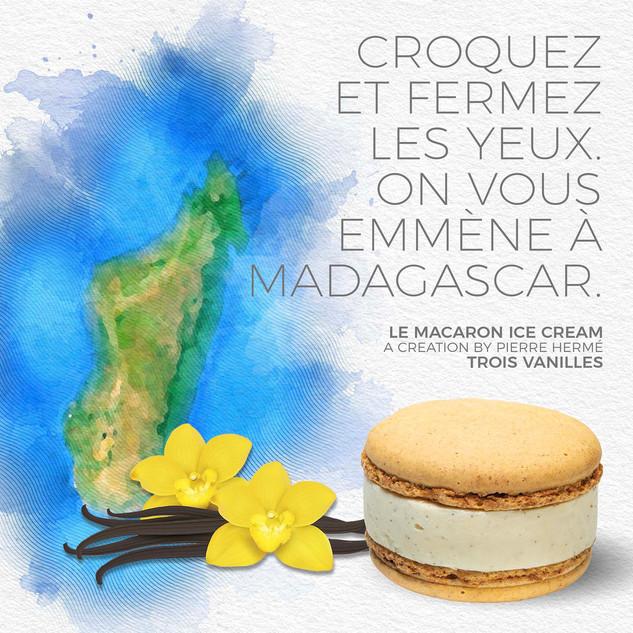 madagascar+macaron.jpg