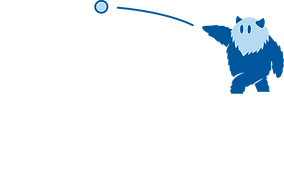Social_snowball_logo_white_text.png