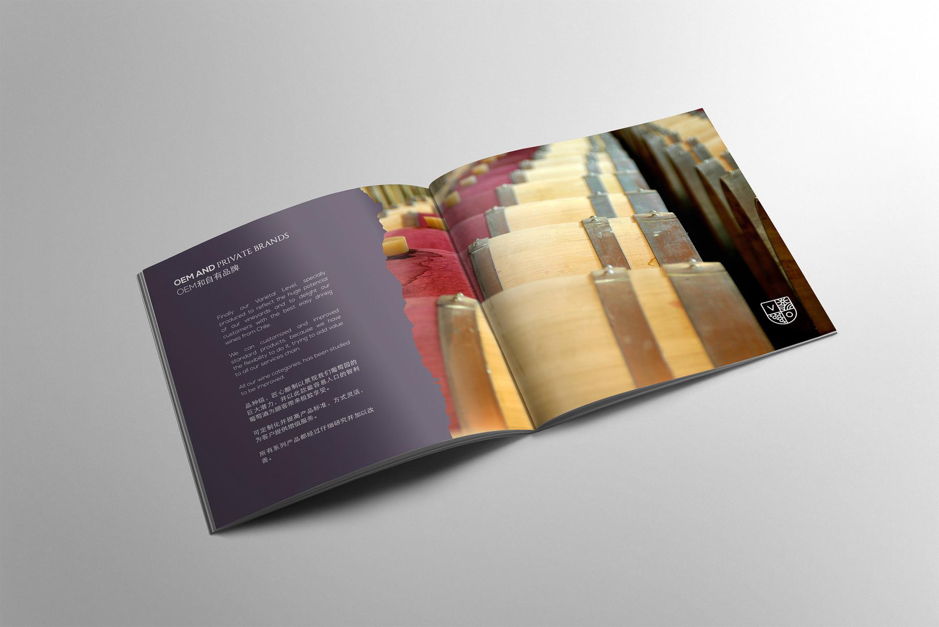 folleto7.jpg