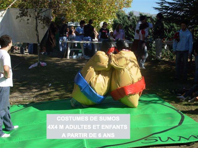 sumo ad - Copie_edited.jpg