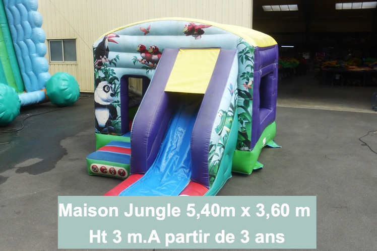 Maison toboggan jungle (1)_edited.jpg