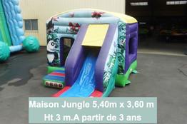 Maison toboggan jungle (1)_edited.jpg