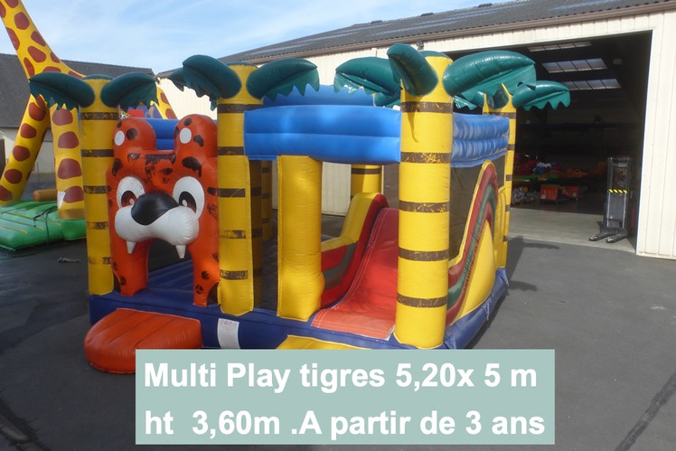 Multiplay tigre (1)_edited.jpg